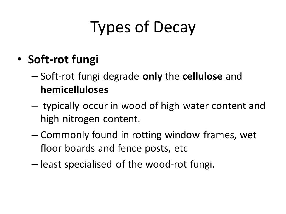 Types of Decay Soft-rot fungi – Soft-rot fungi degrade only the cellulose and hemicelluloses – typically occur in wood of high water content and high nitrogen content.