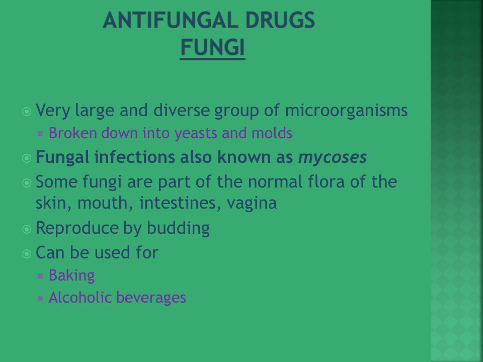  Very large and diverse group of microorganisms  Broken down into yeasts and molds  Fungal infections also known as mycoses  Some fungi are part o