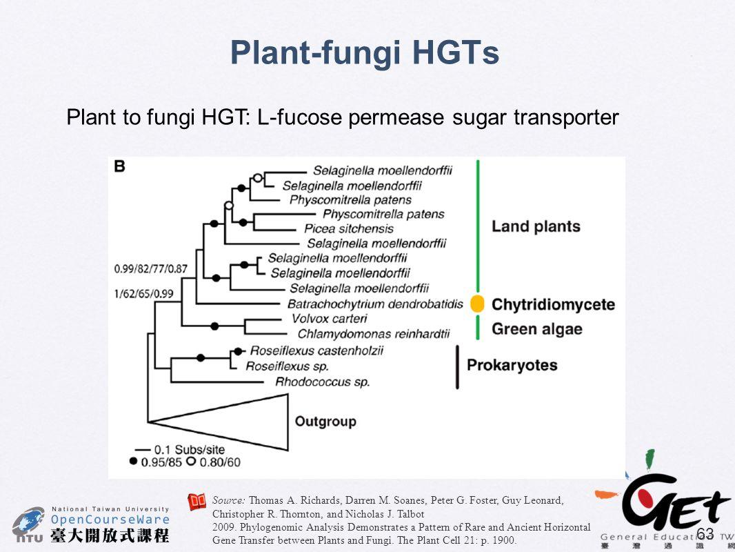 63 Plant-fungi HGTs Plant to fungi HGT: L-fucose permease sugar transporter Source: Thomas A. Richards, Darren M. Soanes, Peter G. Foster, Guy Leonard