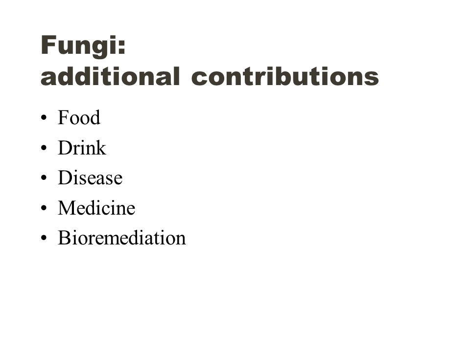 Fungi: additional contributions Food Drink Disease Medicine Bioremediation