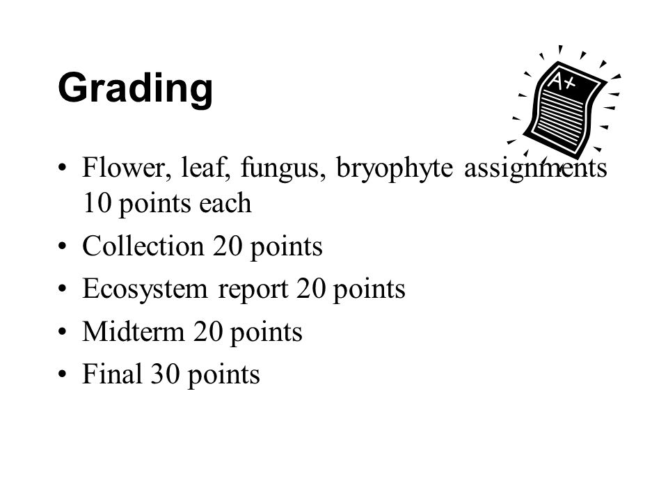 Grading Flower, leaf, fungus, bryophyte assignments 10 points each Collection 20 points Ecosystem report 20 points Midterm 20 points Final 30 points