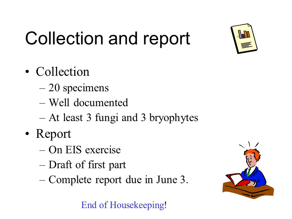 Collection and report Collection –20 specimens –Well documented –At least 3 fungi and 3 bryophytes Report –On EIS exercise –Draft of first part –Complete report due in June 3.