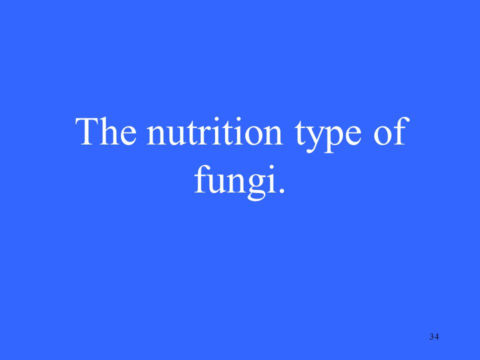 34 The nutrition type of fungi.