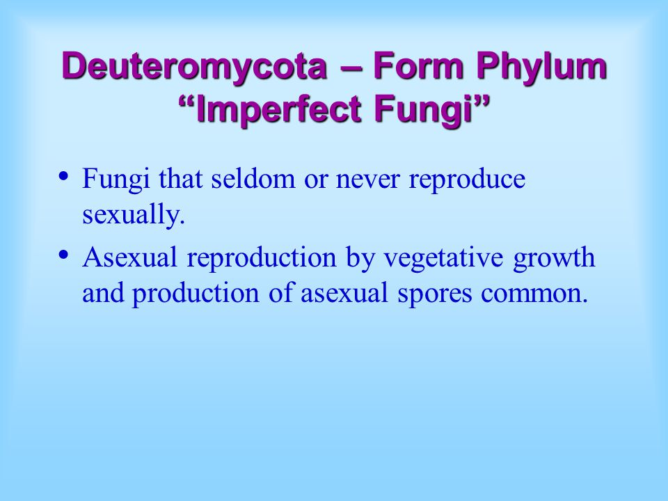 "Deuteromycota – Form Phylum ""Imperfect Fungi"" Fungi that seldom or never reproduce sexually. Asexual reproduction by vegetative growth and production"