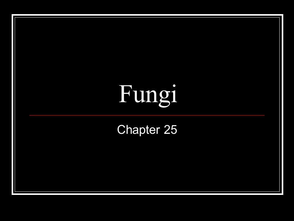 Fungi Chapter 25