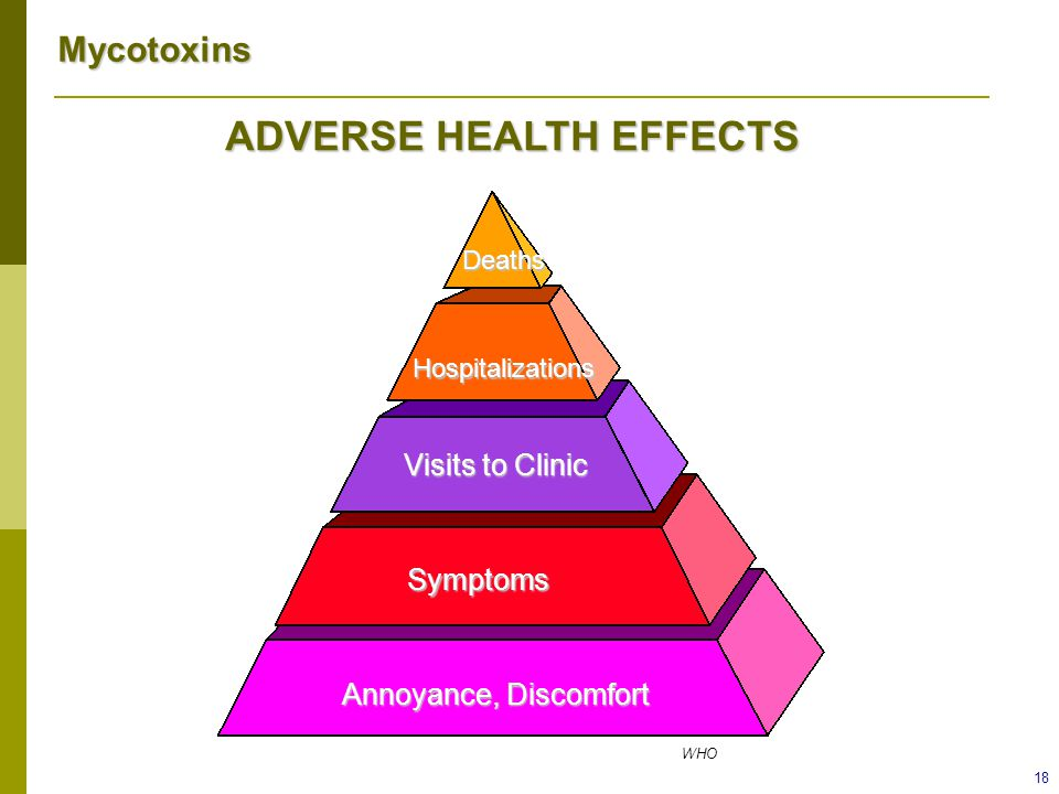 Mycotoxins 18 ADVERSE HEALTH EFFECTS Deaths Hospitalizations Visits to Clinic Symptoms Annoyance, Discomfort WHO