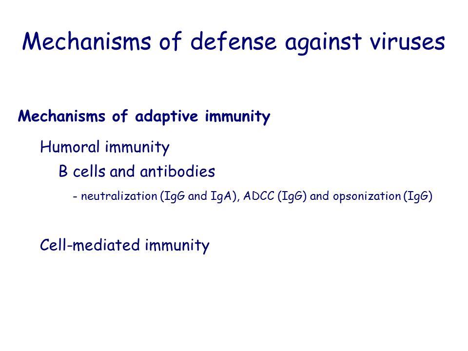 - neutralization (IgG and IgA), ADCC (IgG) and opsonization (IgG) Mechanisms of defense against viruses Mechanisms of adaptive immunity Humoral immuni