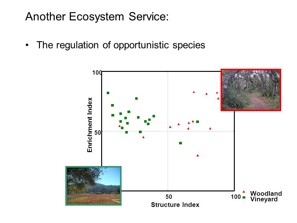 Another Ecosystem Service: The regulation of opportunistic species
