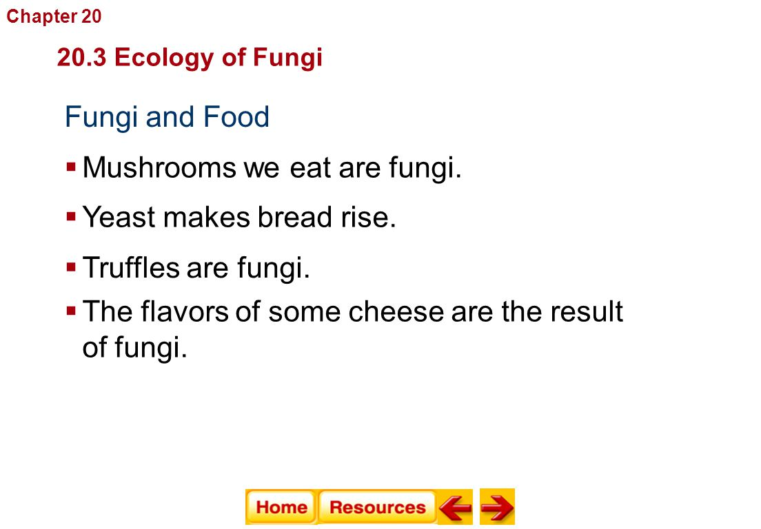 Fungi and Food Fungi  Mushrooms we eat are fungi.  Yeast makes bread rise.  Truffles are fungi.  The flavors of some cheese are the result of fung