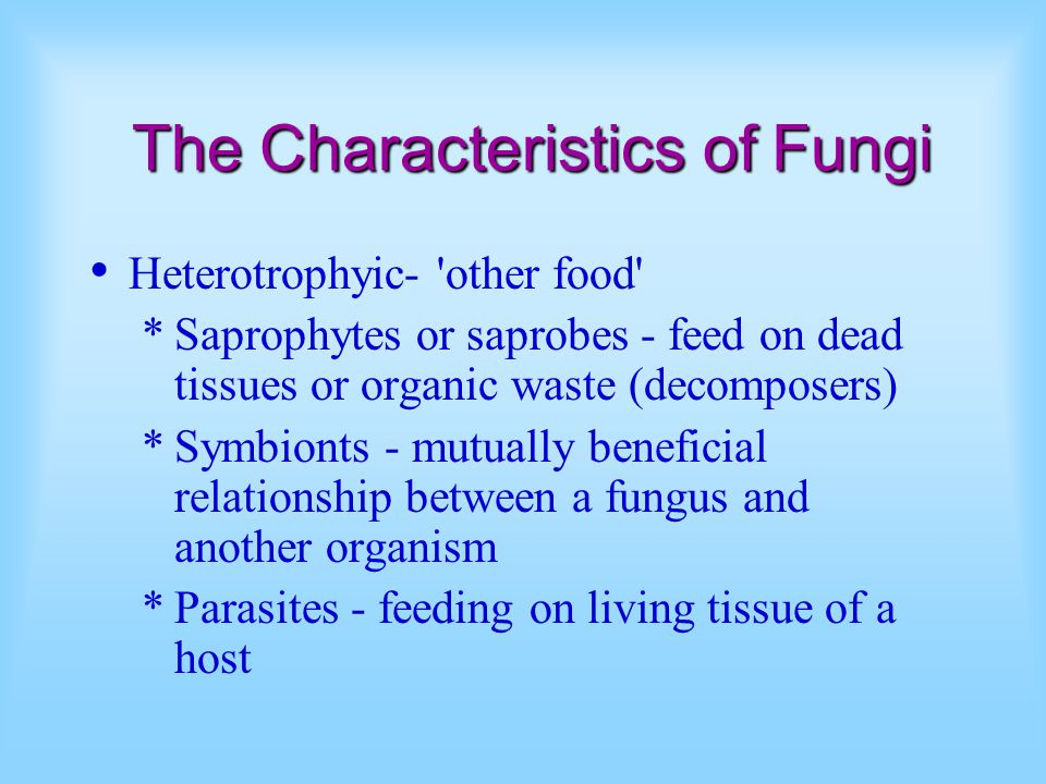 The Characteristics of Fungi Heterotrophyic- other food *Saprophytes or saprobes - feed on dead tissues or organic waste (decomposers) *Symbionts - mutually beneficial relationship between a fungus and another organism *Parasites - feeding on living tissue of a host