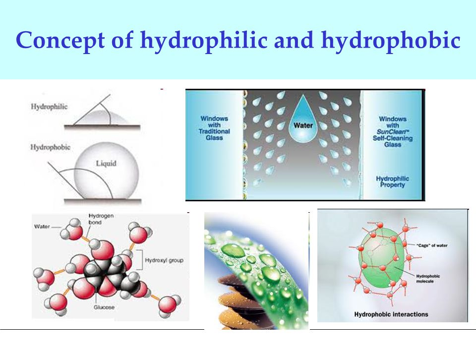 Concept of hydrophilic and hydrophobic