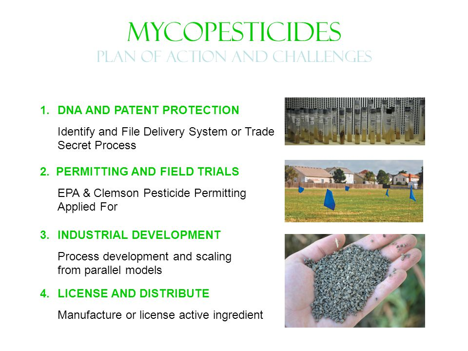 MYCOPESTICIDES PLAN OF ACTION AND CHALLENGES 2.