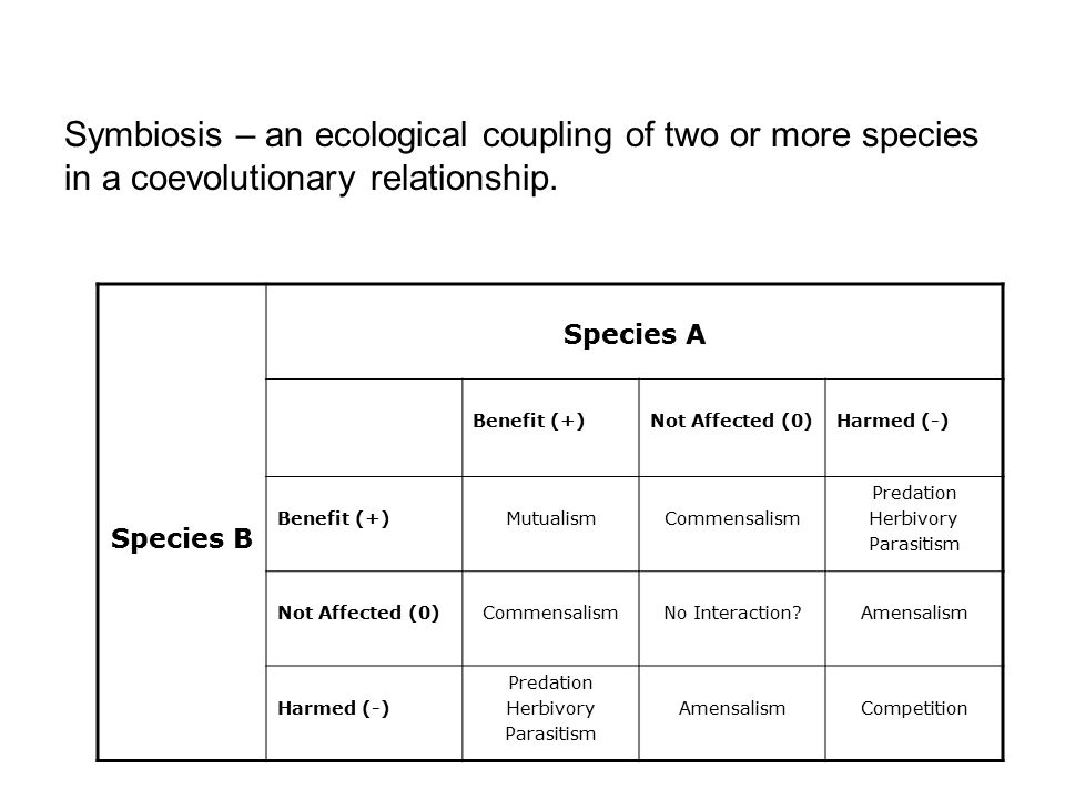 Species B Species A Benefit (+)Not Affected (0)Harmed (-) Benefit (+)MutualismCommensalism Predation Herbivory Parasitism Not Affected (0)CommensalismNo Interaction Amensalism Harmed (-) Predation Herbivory Parasitism AmensalismCompetition Symbiosis – an ecological coupling of two or more species in a coevolutionary relationship.