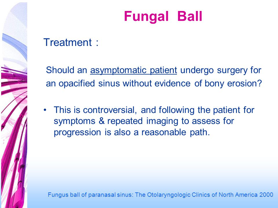 Fungal Ball Treatment : Should an asymptomatic patient undergo surgery for an opacified sinus without evidence of bony erosion.