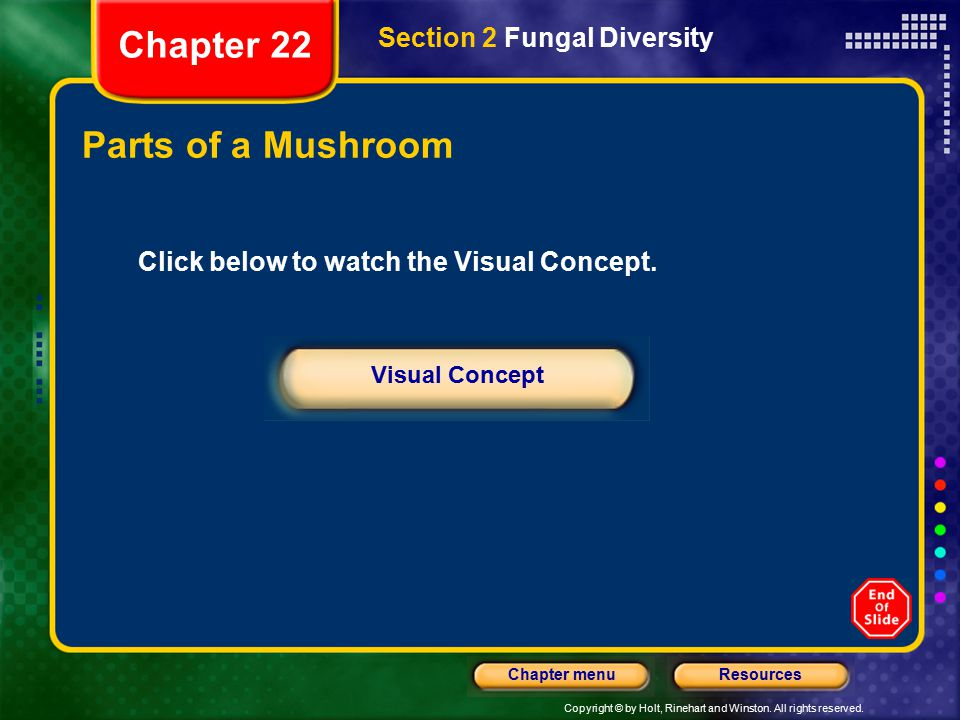 Copyright © by Holt, Rinehart and Winston. All rights reserved. ResourcesChapter menu Parts of a Mushroom Section 2 Fungal Diversity Chapter 22 Click