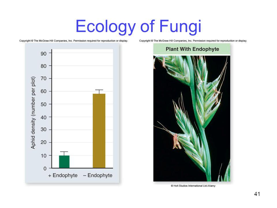 41 Ecology of Fungi