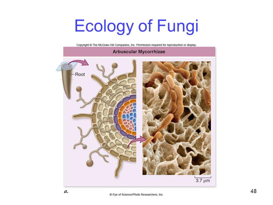 48 Ecology of Fungi