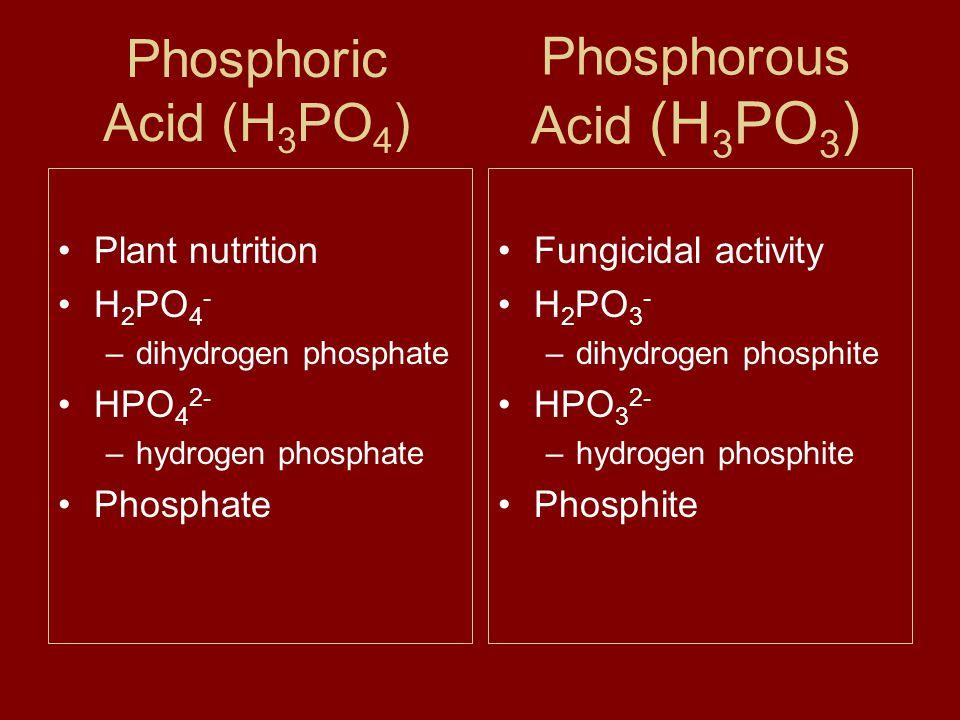 Phosphoric Acid (H 3 PO 4 ) Plant nutrition H 2 PO 4 - –dihydrogen phosphate HPO 4 2- –hydrogen phosphate Phosphate Fungicidal activity H 2 PO 3 - –dihydrogen phosphite HPO 3 2- –hydrogen phosphite Phosphite Phosphorous Acid (H 3 PO 3 )