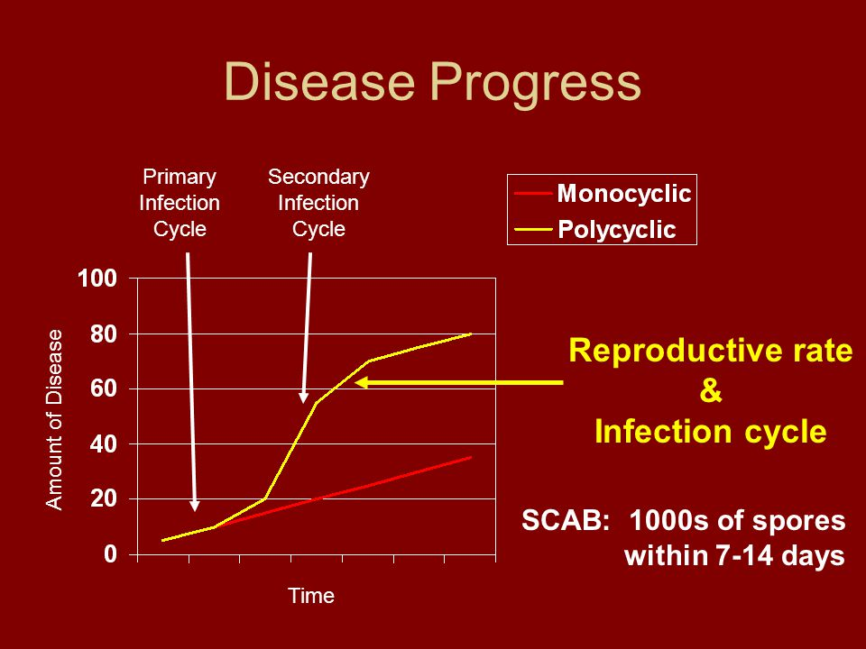 Disease Progress Amount of Disease Time Reproductive rate & Infection cycle SCAB: 1000s of spores within 7-14 days Primary Infection Cycle Secondary Infection Cycle