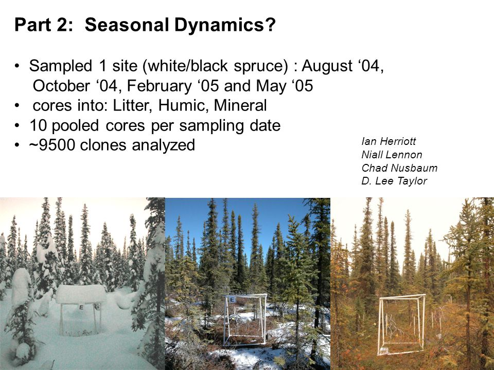 Part 2: Seasonal Dynamics.