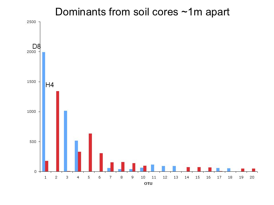 Dominants from soil cores ~1m apart D8 H4