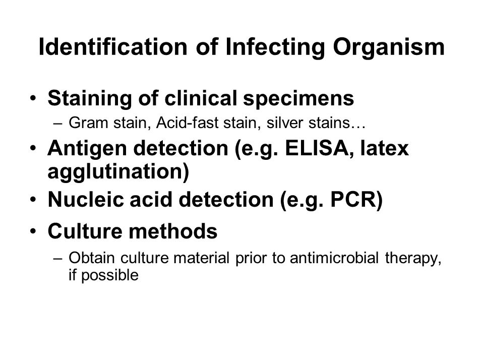 Identification of Infecting Organism Staining of clinical specimens –Gram stain, Acid-fast stain, silver stains… Antigen detection (e.g. ELISA, latex