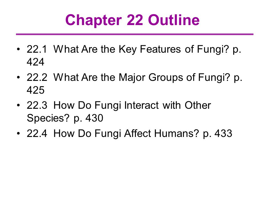 Chapter 22 Outline 22.1 What Are the Key Features of Fungi.