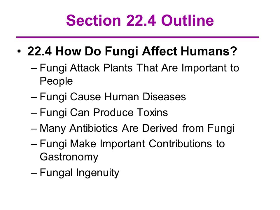 Section 22.4 Outline 22.4 How Do Fungi Affect Humans.
