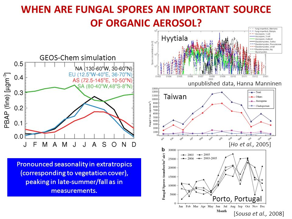 RELEVANCE TO GLOBAL OA BUDGET… Fungal spores make a modest (7%), but regionally important contribution to OA budget.