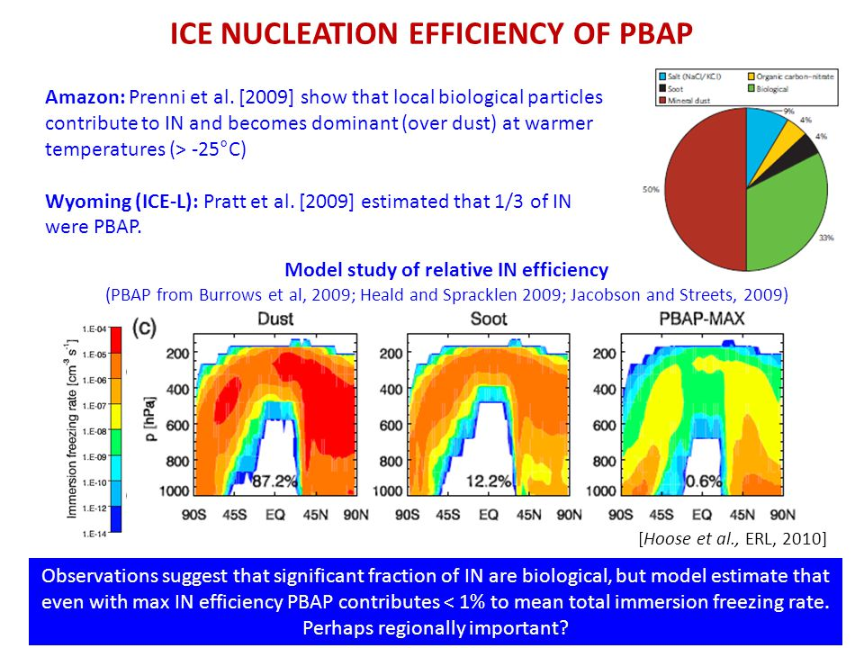 ICE NUCLEATION EFFICIENCY OF PBAP [Hoose et al., ERL, 2010] Observations suggest that significant fraction of IN are biological, but model estimate that even with max IN efficiency PBAP contributes < 1% to mean total immersion freezing rate.