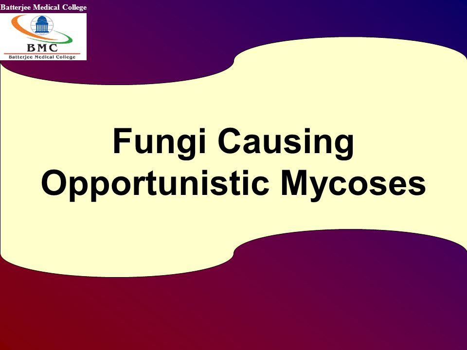 Batterjee Medical College Fungi Causing Opportunistic Mycoses