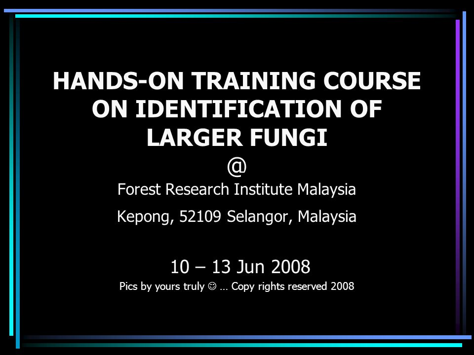 HANDS-ON TRAINING COURSE ON IDENTIFICATION OF LARGER FUNGI @ Forest Research Institute Malaysia Kepong, 52109 Selangor, Malaysia 10 – 13 Jun 2008 Pics
