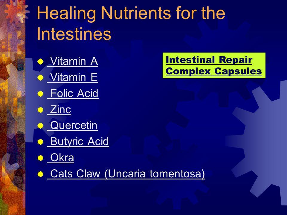 Healing Nutrients for the Intestines  Vitamin A  Vitamin E  Folic Acid  Zinc  Quercetin  Butyric Acid  Okra  Cats Claw (Uncaria tomentosa) Intestinal Repair Complex Capsules