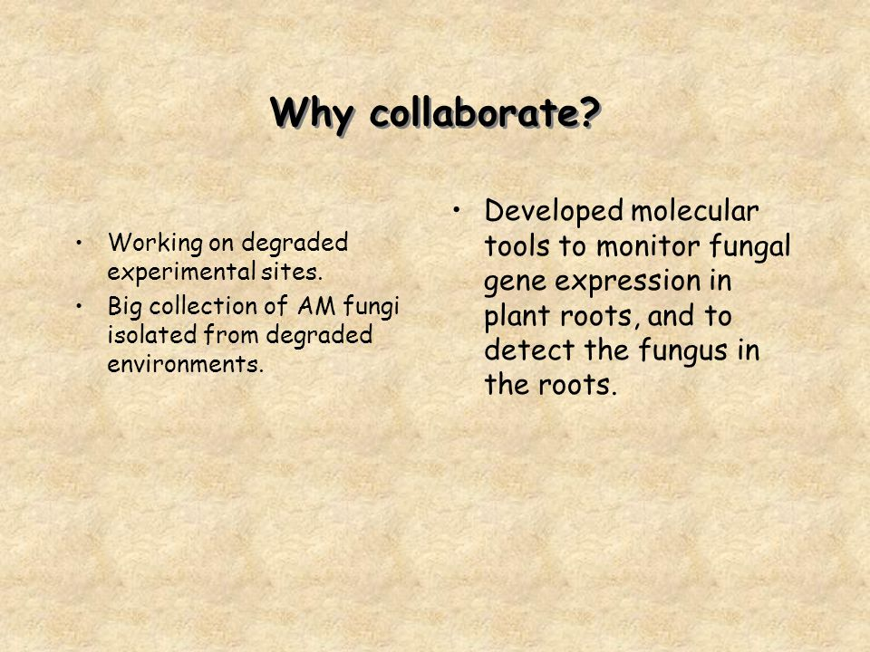 Why collaborate. Working on degraded experimental sites.