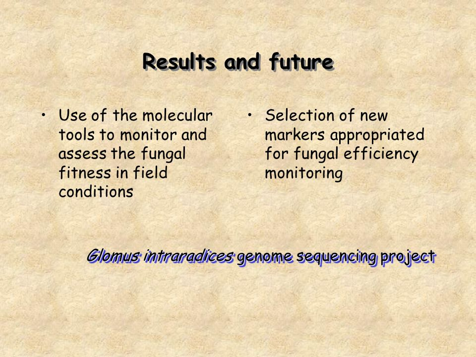 Results and future Use of the molecular tools to monitor and assess the fungal fitness in field conditions Selection of new markers appropriated for fungal efficiency monitoring Glomus intraradices genome sequencing project