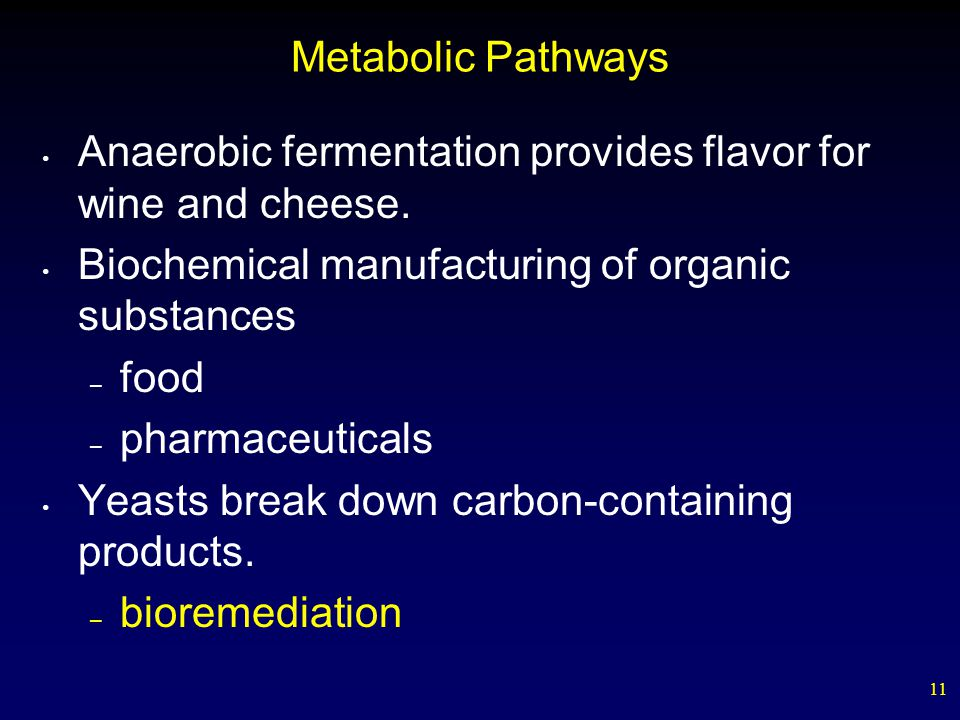 11 Metabolic Pathways Anaerobic fermentation provides flavor for wine and cheese. Biochemical manufacturing of organic substances – food – pharmaceuti