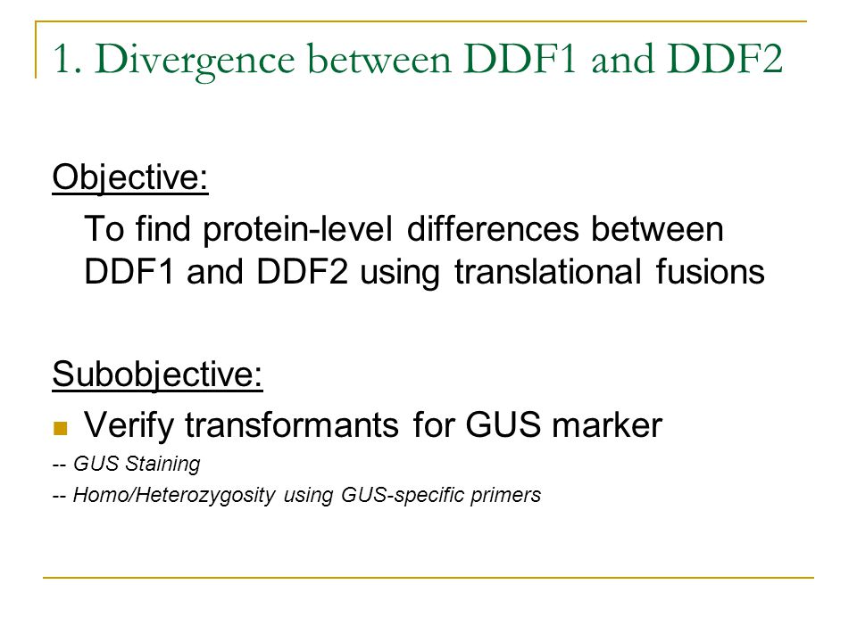 1. Divergence between DDF1 and DDF2 Objective: To find protein-level differences between DDF1 and DDF2 using translational fusions Subobjective: Verif