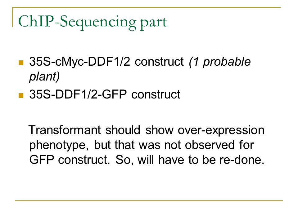 ChIP-Sequencing part 35S-cMyc-DDF1/2 construct (1 probable plant) 35S-DDF1/2-GFP construct Transformant should show over-expression phenotype, but that was not observed for GFP construct.