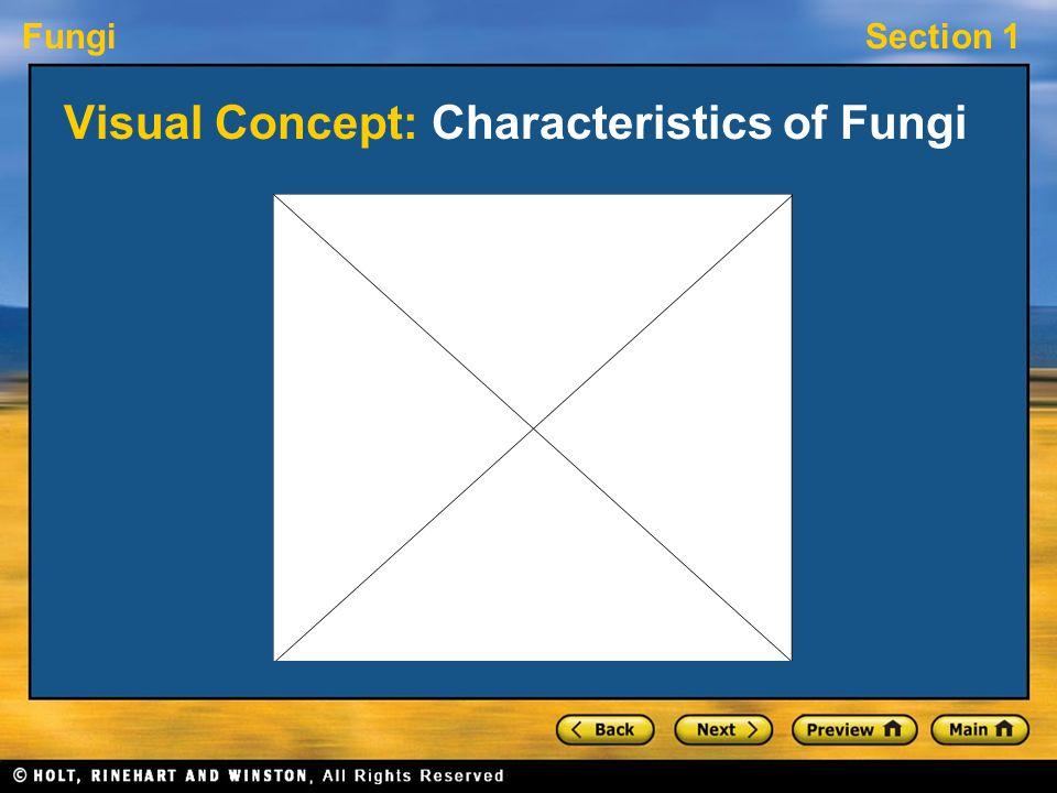 FungiSection 1 Visual Concept: Characteristics of Fungi