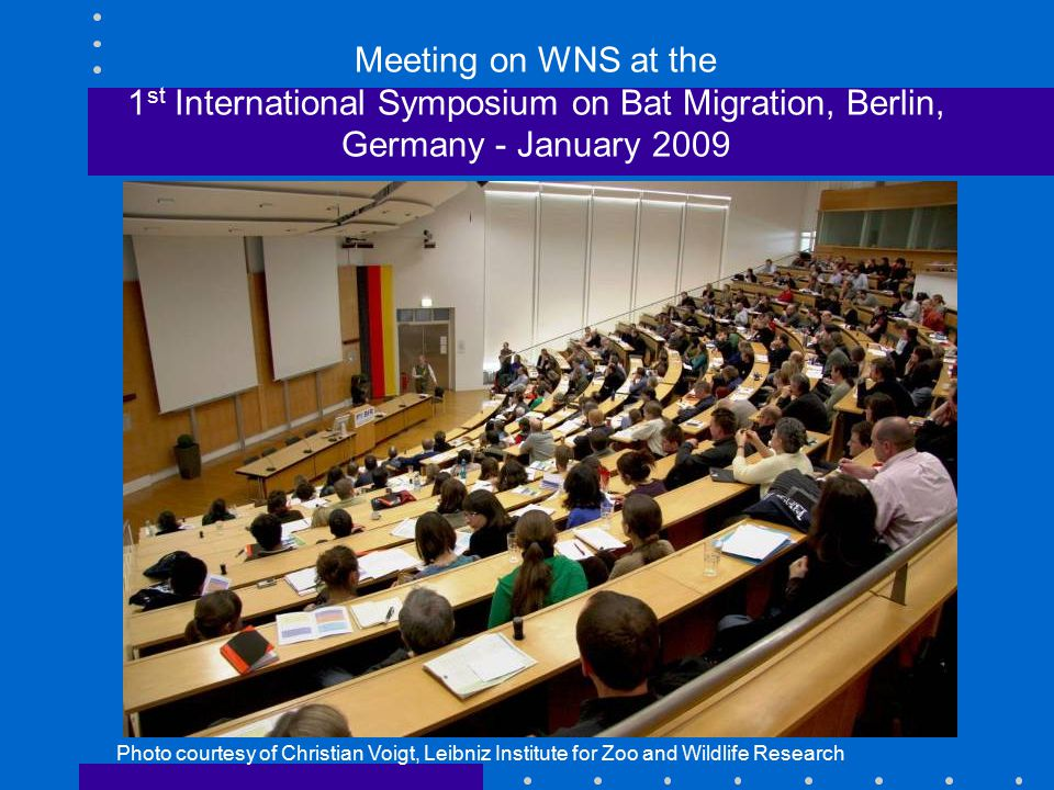 Meeting on WNS at the 1 st International Symposium on Bat Migration, Berlin, Germany - January 2009 Photo courtesy of Christian Voigt, Leibniz Institute for Zoo and Wildlife Research