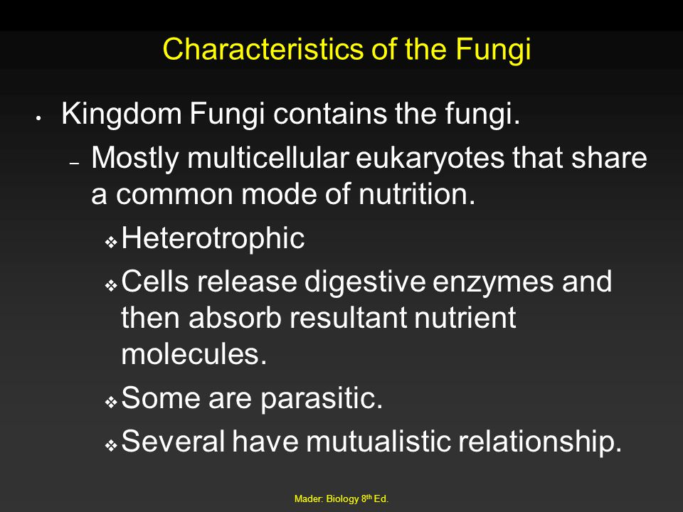 Mader: Biology 8 th Ed. Characteristics of the Fungi Kingdom Fungi contains the fungi. – Mostly multicellular eukaryotes that share a common mode of n