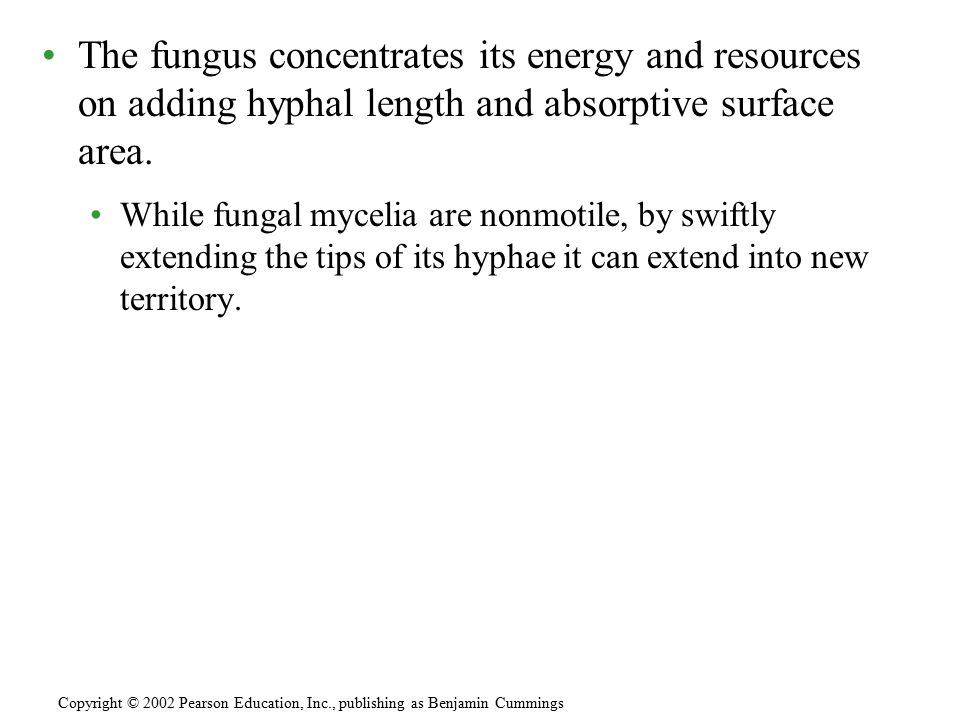 Fungi reproduce by releasing spores that are produced either sexually or asexually.