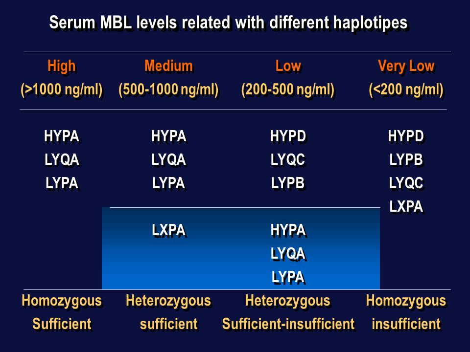 Serum MBL levels related with different haplotipes High (>1000 ng/ml) HYPA LYQA LYPA Homozygous Sufficient High (>1000 ng/ml) HYPA LYQA LYPA Homozygous Sufficient Medium (500-1000 ng/ml) HYPA LYQA LYPA LXPA Heterozygous sufficient Medium (500-1000 ng/ml) HYPA LYQA LYPA LXPA Heterozygous sufficient Low (200-500 ng/ml) HYPD LYQC LYPB HYPA LYQA LYPA Heterozygous Sufficient-insufficient Low (200-500 ng/ml) HYPD LYQC LYPB HYPA LYQA LYPA Heterozygous Sufficient-insufficient Very Low (<200 ng/ml) HYPD LYPB LYQC LXPA Homozygous insufficient Very Low (<200 ng/ml) HYPD LYPB LYQC LXPA Homozygous insufficient