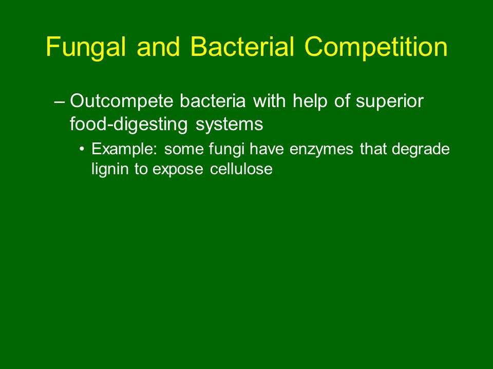 Fungal and Bacterial Competition –Outcompete bacteria with help of superior food-digesting systems Example: some fungi have enzymes that degrade lignin to expose cellulose