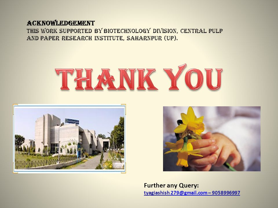 ACKNOWLEDGEMENT This work supported by Biotechnology Division, Central Pulp and paper research institute, Saharnpur (up).