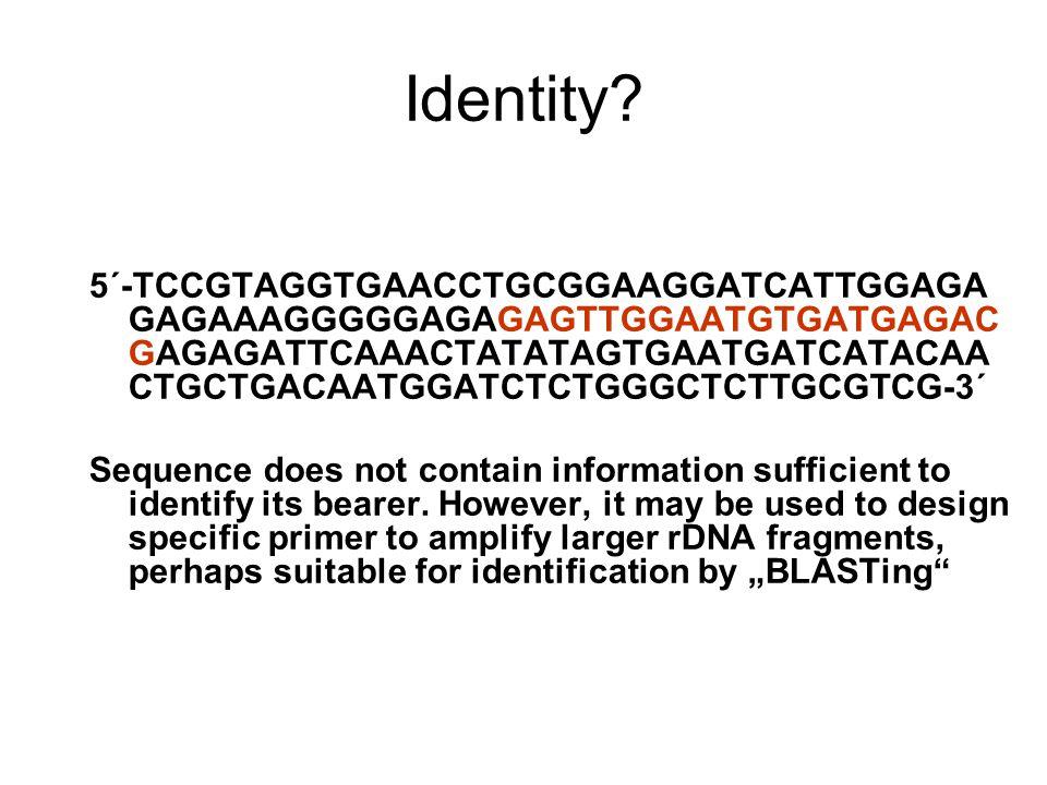 Identity? 5´ ‑ TCCGTAGGTGAACCTGCGGAAGGATCATTGGAGA GAGAAAGGGGGAGAGAGTTGGAATGTGATGAGAC GAGAGATTCAAACTATATAGTGAATGATCATACAA CTGCTGACAATGGATCTCTGGGCTCTTGC