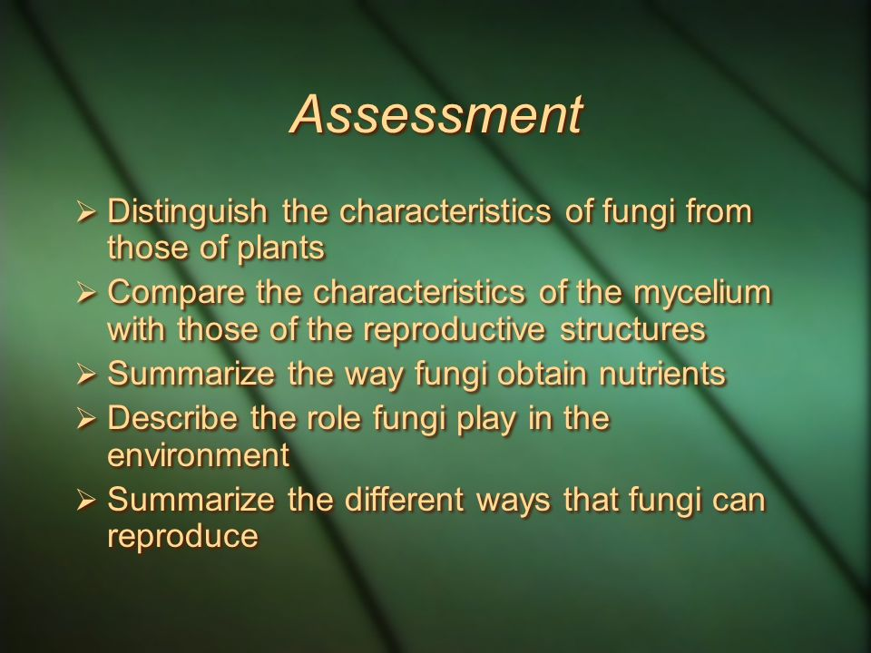 Assessment  Distinguish the characteristics of fungi from those of plants  Compare the characteristics of the mycelium with those of the reproductive structures  Summarize the way fungi obtain nutrients  Describe the role fungi play in the environment  Summarize the different ways that fungi can reproduce  Distinguish the characteristics of fungi from those of plants  Compare the characteristics of the mycelium with those of the reproductive structures  Summarize the way fungi obtain nutrients  Describe the role fungi play in the environment  Summarize the different ways that fungi can reproduce