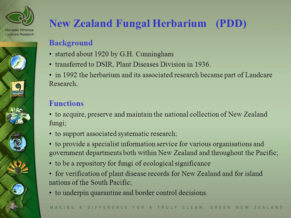 International Collection of Micro-organisms (ICMP) searchable database now on-line http://nzfungi.landcareresearch.co.nz/icmp/search_cultures.asp