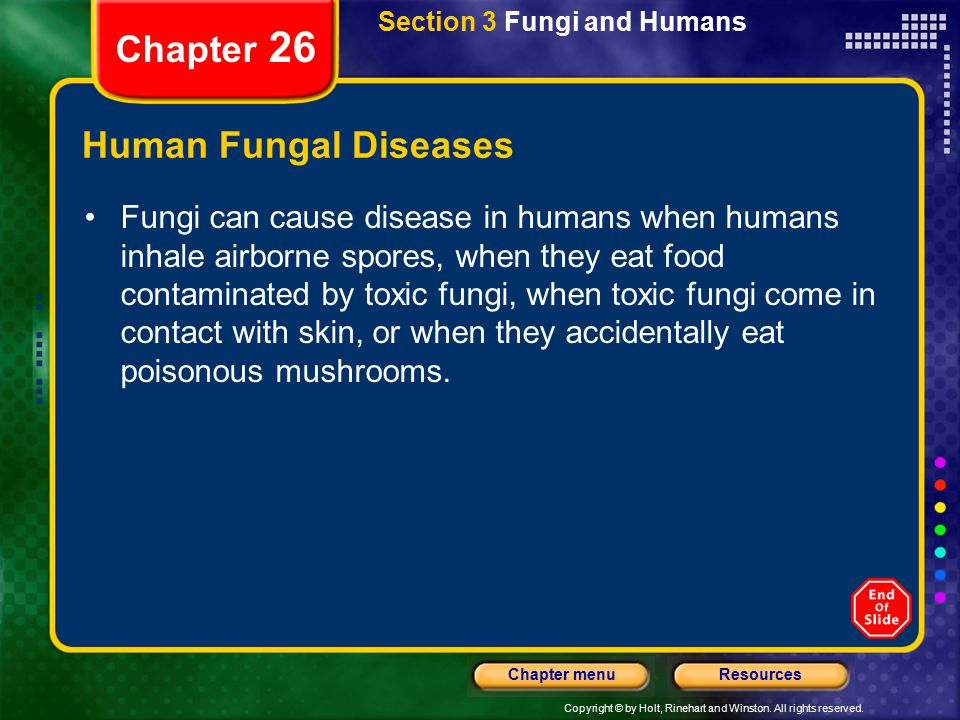 Copyright © by Holt, Rinehart and Winston. All rights reserved. ResourcesChapter menu Section 3 Fungi and Humans Chapter 26 Human Fungal Diseases Fung