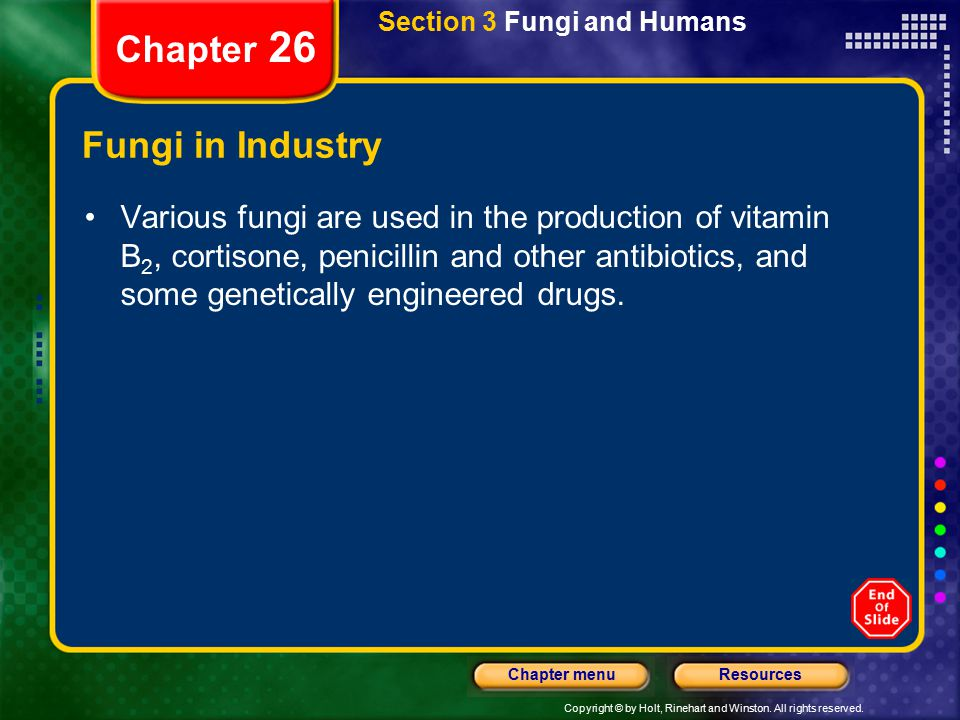 Copyright © by Holt, Rinehart and Winston. All rights reserved. ResourcesChapter menu Section 3 Fungi and Humans Chapter 26 Fungi in Industry Various